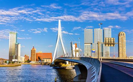 rotterdam: View of Erasmus Bridge in Rotterdam, Netherlands