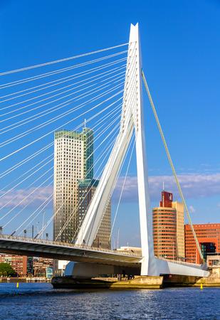 View of Erasmus Bridge in Rotterdam, Netherlands