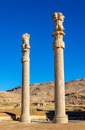 nations: Ancient columns in the Gate of All Nations - Persepolis, Iran