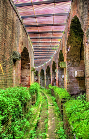 subterranean: Subterranean passage beneath the arena of the Capua Amphitheatre - Italy
