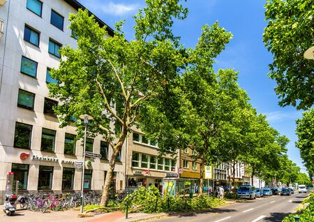 6 people: Dusseldorf, Germany - June 10, 2014: Broken trees in the city center of Dusseldorf. This storm killed 6 people in North Rhine-Westphalia
