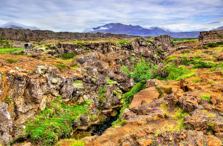 Thingvellir National Park,   in Iceland Stock Photo