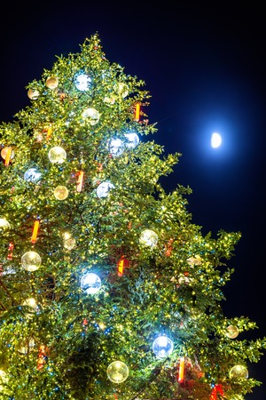 Christmas tree and Moon in Strasbourg - Alsace, France