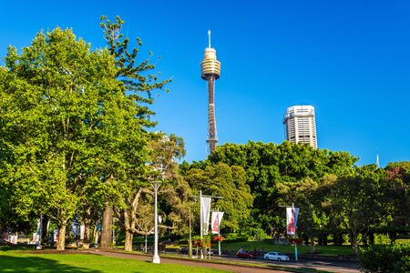 nsw: Hyde Park with modern building in the background in Sydney, Australia Stock Photo