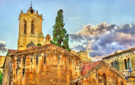 Cathedral of Tarragona in the evening. Catalonia, Spain Stock Photo