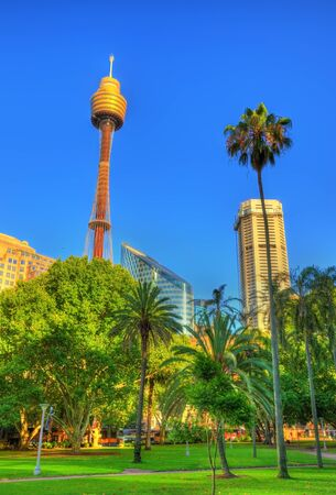 Hyde Park with modern building in the background in Sydney, Australia Stock Photo