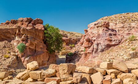 tourist site: View of sandstone rocks at Petra