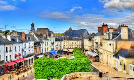 the loire: View of the medieval town of Amboise in France, the Loire Valley Stock Photo
