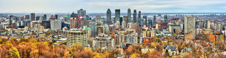 Montreal skyline from Mont Royal, Canada 免版税图像