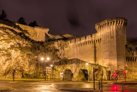 Defensive walls of Avignon, a  heritage site in France
