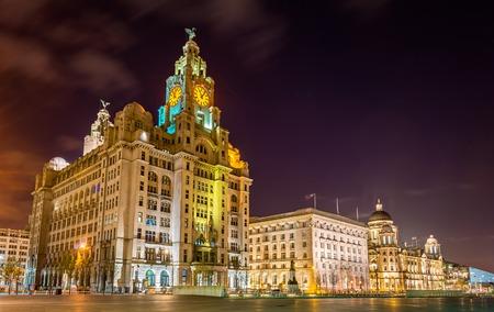 De koninklijke lever, de gebouwen Cunard en de haven van Liverpool