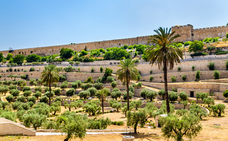 City Walls of Jerusalem above the Kidron Valley - Israel