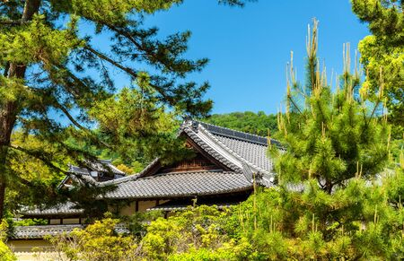 Roofs of a shinto shrine in Nara - Japan