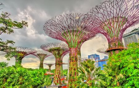 싱가포르 중심의 자연 공원 인만의 정원 에디토리얼