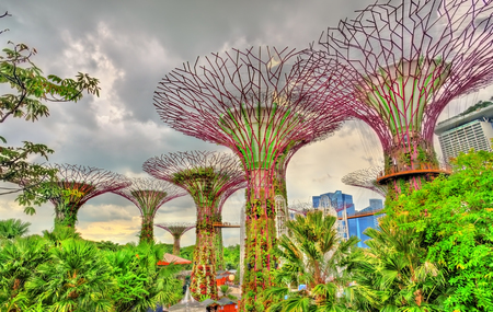Gardens by the Bay, a nature park in central Singapore
