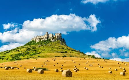 View of Spissky hrad and a field with round bales in Slovakia, Central Europe
