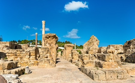 Ruins of the Baths of Antoninus in Carthage, Tunisia.