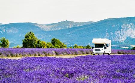 Wohnmobil in einem Lavendelfeld in der Provence, Frankreich