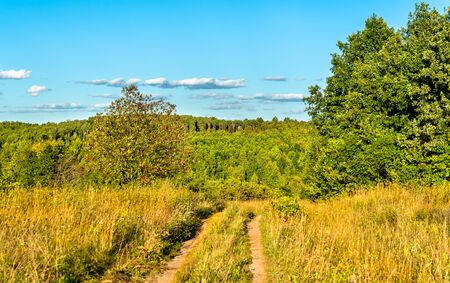 Typical rural landscape of Kursk region, Russia 스톡 콘텐츠