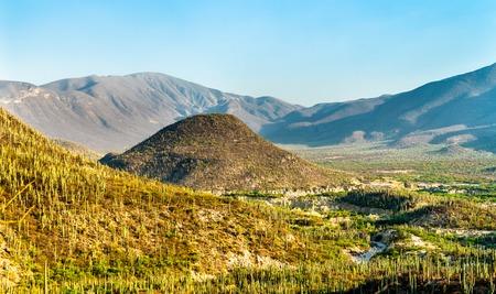 Tehuacan-Cuicatlan Biosphere Reserve in Mexico