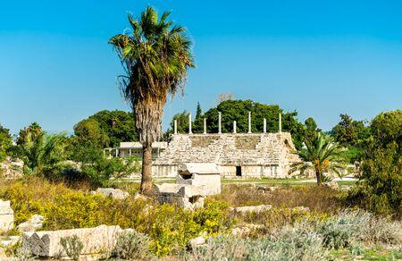 Ancient hippodrome in Tyre,    in Lebanon Фото со стока