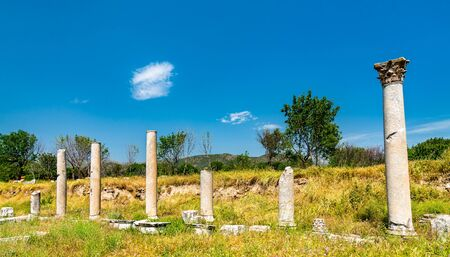 Ruins of Aphrodisias in Turkey