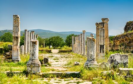 Ruins of Aphrodisias,    in Turkey