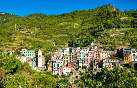 Manarola Village at the Cinque Terre in Italy 免版税图像