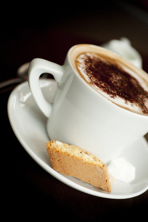A Cappuccino with chocolate dusting on the foam with an italian Biscotti perched on the rim of the saucer in a cafe style setting