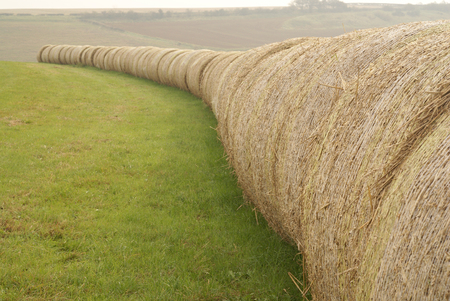 Bales of hay in the Lincolnshire Wolds near Tealby, Lincolnshire, UK - October 2007 Stock Photo