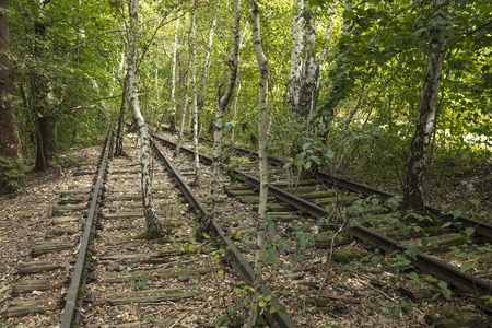 Nature Park Schoneberger Sudgelande, Berlin, Germany - 30th August 2017 - disused tracks at the Sudgelande reserve