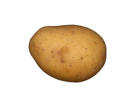 A white potato on a plain white background