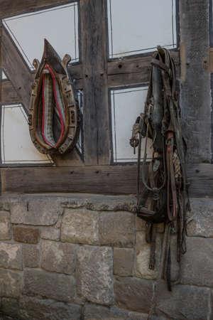 caballo bebe: en frente de la estable caballo Foto de archivo