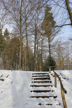 winterly: staircase in winterly forest Stock Photo