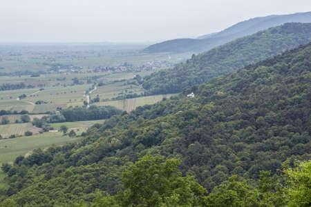 winegrowing: Rhine rift Stock Photo