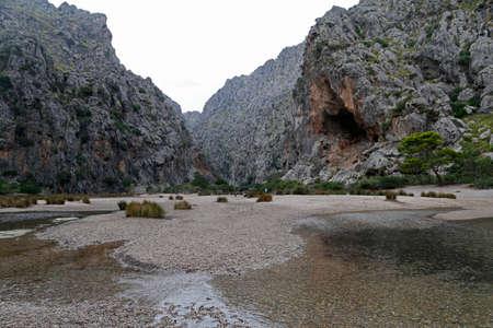 lofty: Canyon