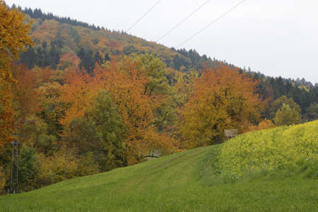 momentariness: autumn in German Odenwald region Stock Photo