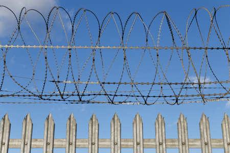 metal filament: Barb Wire