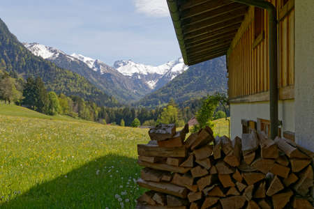firewood in the austrian alps