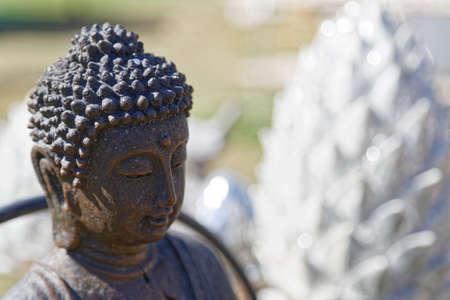 wellness buddha