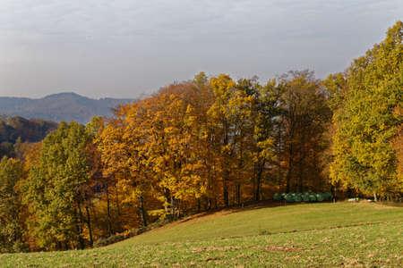momentariness: German Odenwald landscape