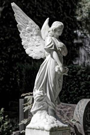 angel on grave for condolence card