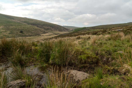 Dartmoor Dart Valley landscape