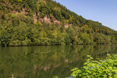 River Neckar in Heidelberg with forest and flowers Standard-Bild