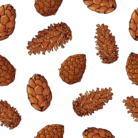 Seamless pattern with cones. Christmas pattern. Pinecones. Isolated on white background. Botanical hand drawn vector illustration. For Christmas design, fabrics, wallpapers, greeting cards, wrappings.