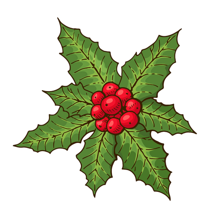 Christmas mistletoe with red berries and green leaves. Christmas symbol. Design element for Christmas decoration. Isolated on white background. Vintage style. Vector color hand drawn illustration.