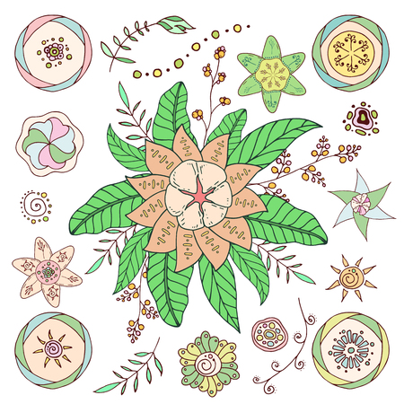 Set of hand drawn vector flowers and branches with leaves, flowers, berries. Doodle style. Isolated on white background. Decorative elements for your design. Vector color botanical illustration.