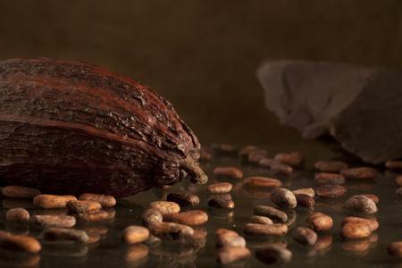 cacao: cacao en grano con el chocolate en el fondo Foto de archivo
