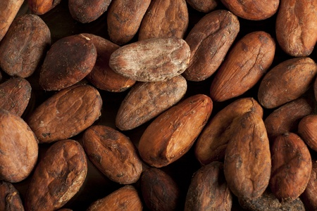 cocoa beans: cocoa beans background