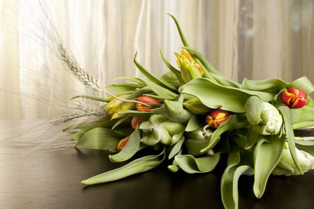 bouquet of red, yellow and green tulips on the wood table photo